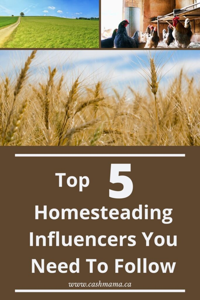 The top 5 homesteading influencers for beginner homesteaders