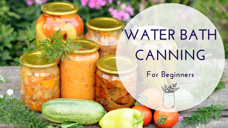 Water Bath Canning For Beginners in 2021